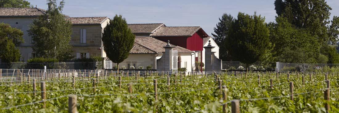 Terroir Château Grand Corbin-Despagne